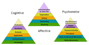 Blooms Taxonomy #5
